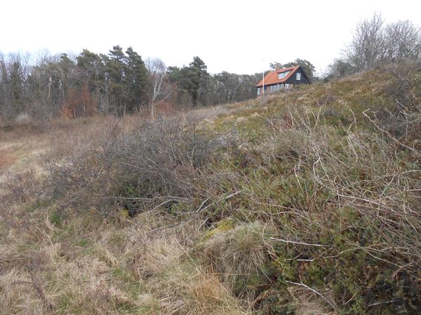 Sommerhuset Helligdomsvej 2 får nu udsigt til det cyklende folk. Foto©JørgenKoefoed.